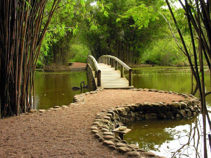 Jardim Botânico de Porto Alegre, Rio Grande do Sul, Brasil. Site: http://www.fzb.rs.gov.br/jardimbotanico/