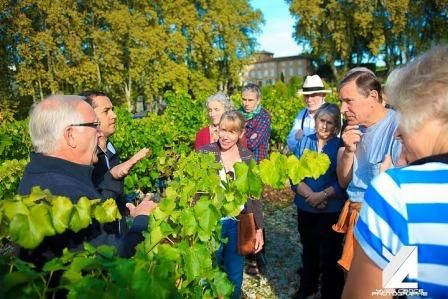 Sancerre wine tour in the Loire Valley visit vineyards and taste wines