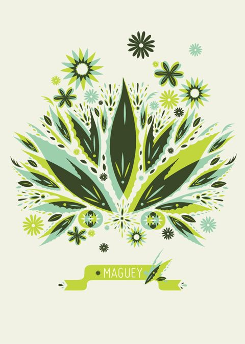 Herencia Mexicana Illustration - Maguey