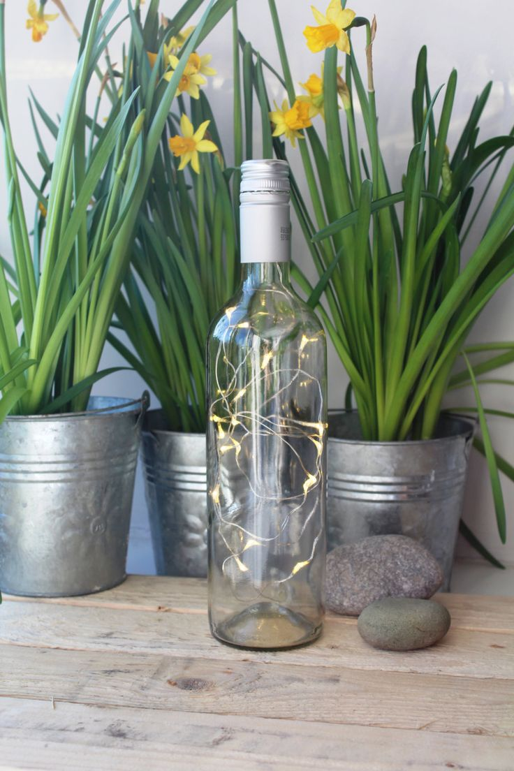 Wine Bottle Lamp / fairy lights / fairy lights lamp / fairy lights bottle / bedroom lighting / kitchen lighting / Mother's day by SuzieValentineAllan on Etsy