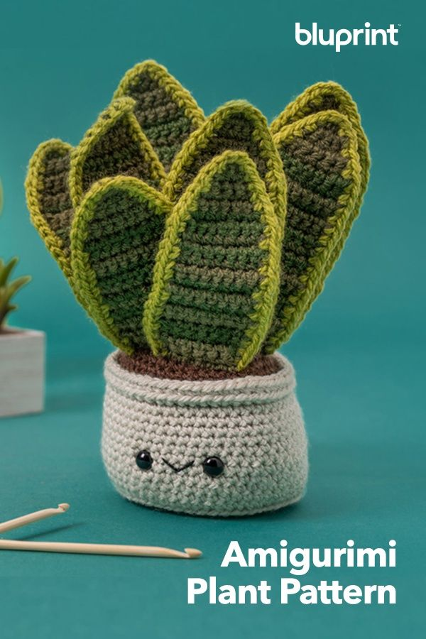 Crochet Succulents Patterns From Planet June | Modelos de crochê ... | 900x600