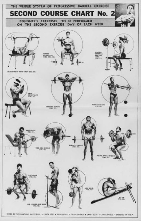 The Weider System of Progressive Barbell Exercise ... | 600 x 937 jpeg 76kB