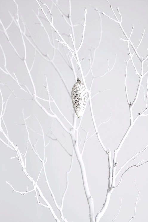winter tree <3