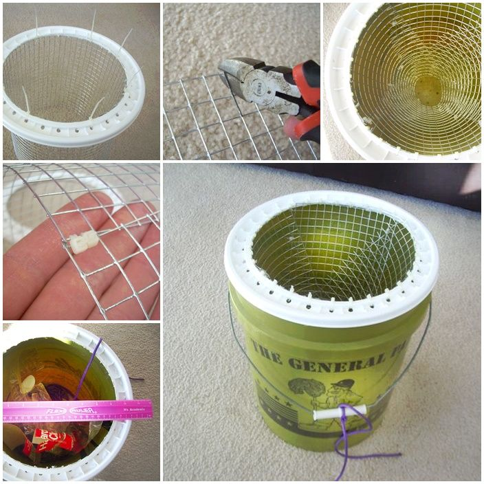 Homemade 5 gallon bucket fish trap project the homestead for Homemade fish trap