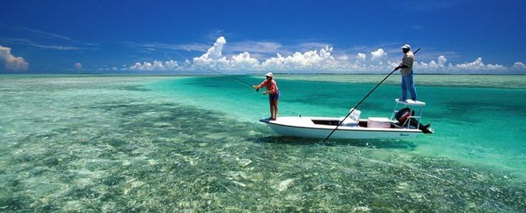 17 best images about fly fishing saltwater on pinterest for Fly fishing bahamas
