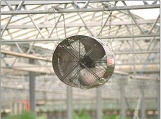 Piticul de Grădină: Aerisirea solarelor sau a serelor