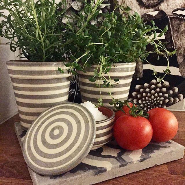 Nu finns vår grårandiga serie på lager. Örtkrukorna finns i flera mönster och färger. #atlashome #marockanskkeramik #marrakech #gray #grayscale #tomatos #tomato #nadjawedin #marockansktkakel #tiles #ceramic @atlashome #krukor #örter