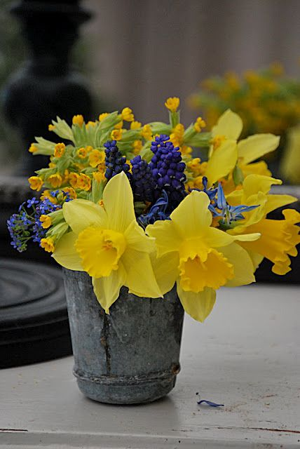 Daffodils, cow parsley and grape hyacinths - these table arrangements just sing spring!