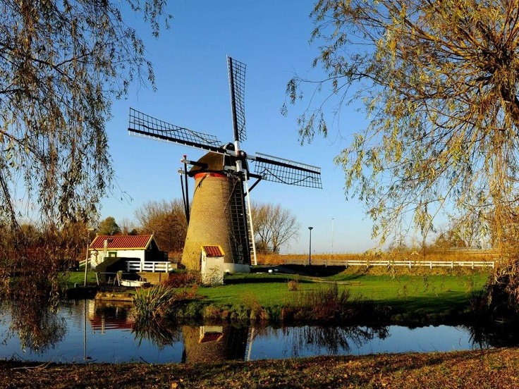 Wind mill - Wippersmolen Maassluis - South-Holland - Netherlands - Pixdaus