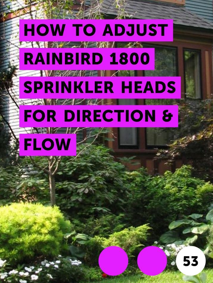 Learn How To Adjust Rainbird 1800 Sprinkler Heads For Direction Flow How To Guides Tips And Tricks Sprinkler Heads Sprinkler Pop Up Sprinklers