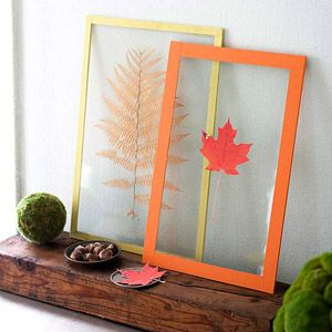 Frame your fall
