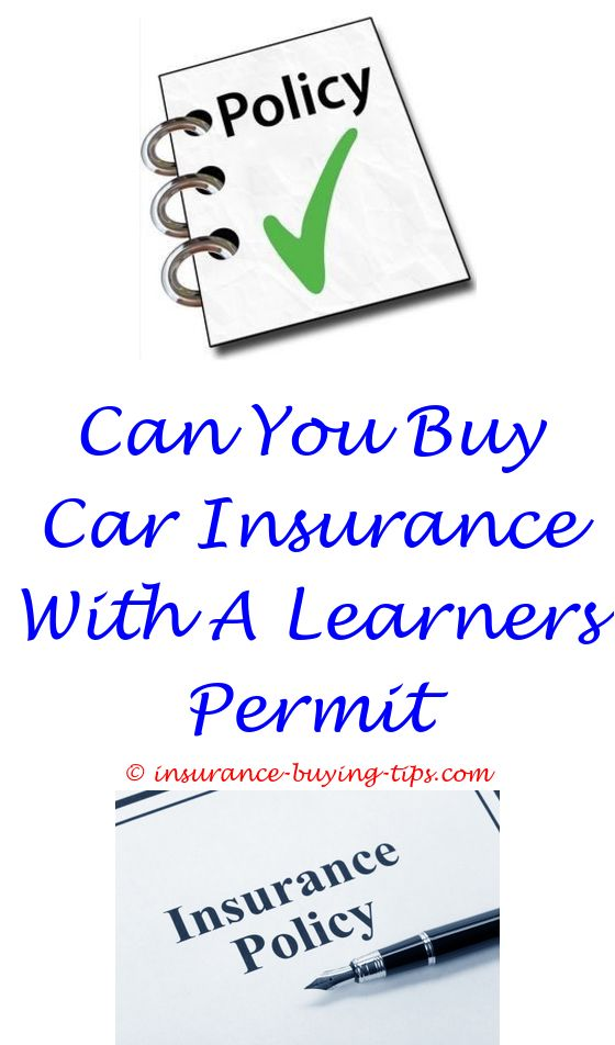 how to buy travel insurance for mexico - can i buy insurance straight from health insurance.buy forest insurance when can you buy gap insurance best buy laptop insurance theft 9717079826