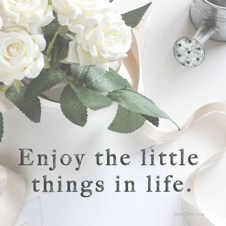 Enjoy the little things in life. Motivational and inspirational quotes.