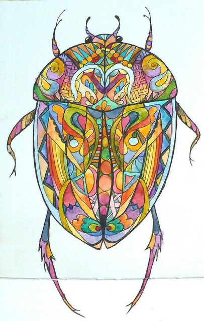 Coleoptera Psychedelica | Flickr - Photo Sharing!