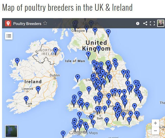 Breeders Database of Chickens and other Poultry For Sale in the UK & Ireland. Browse our map or by County in our listings.