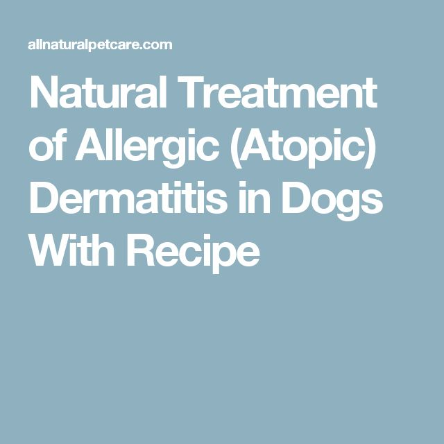 Natural Treatment of Allergic (Atopic) Dermatitis in Dogs With Recipe