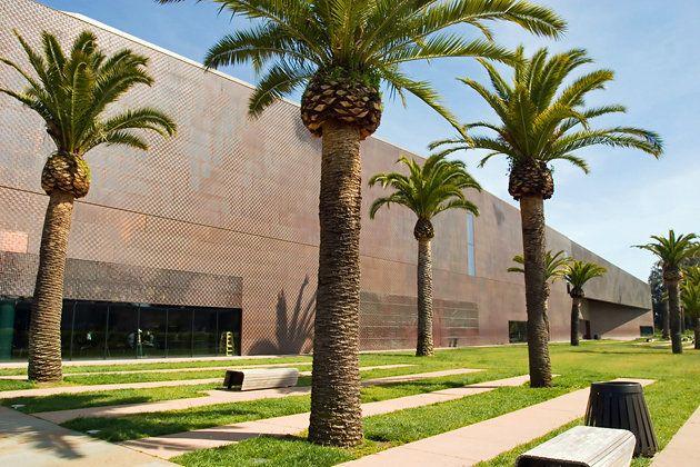de Young Fine Arts Museum of San Francisco