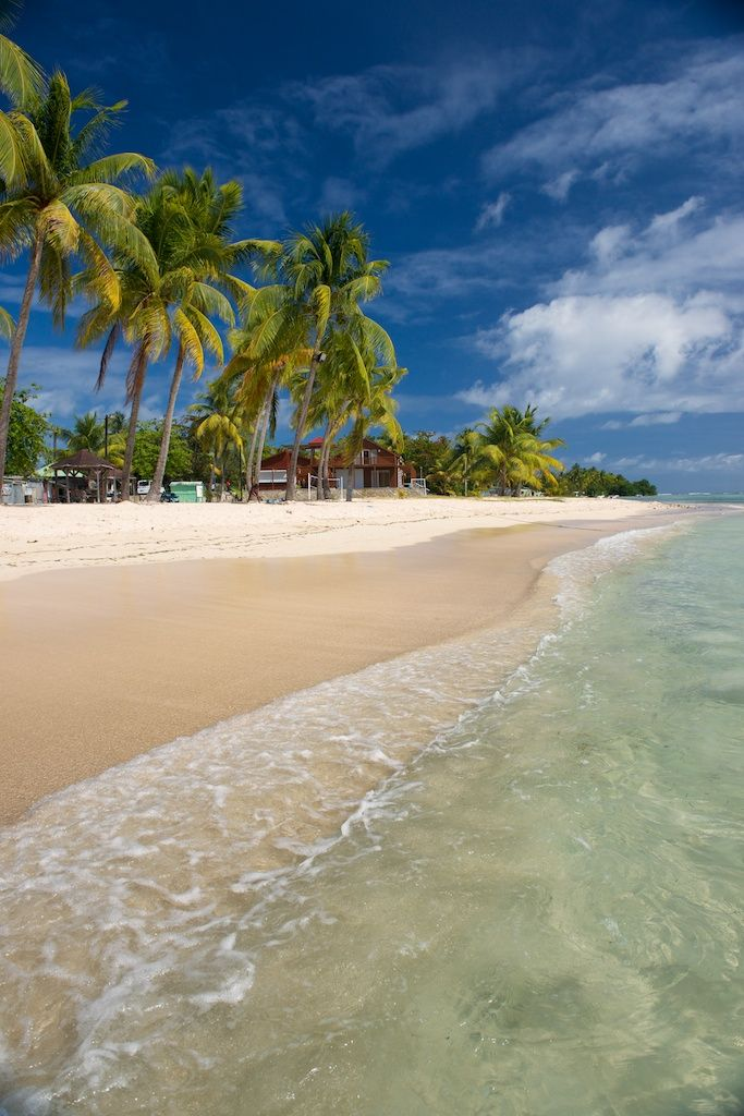 Marie Galante, Guadeloupe #Beach  #VisitGuadeloupe #GuadeloupeIslands
