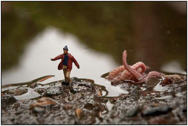 Stunning Miniature Photography World by Kurt Moses and his Wife… (20)