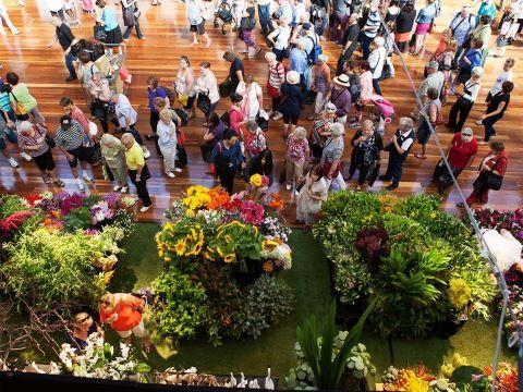 MELBOURNE INTERNATIONAL FLOWER AND GARDEN SHOW: La exposición anual de flores y jardines en Melbourne se lleva a cabo en el Palacio Real de Exposiciones, Patrimonio de la Humanidad, ubicado en los Jardines de Carlton. Como todos los años, la exposición tiene previsto regresar este otoño llena de color y magníficos diseños florales. No cabe duda que es la exposición anual de flores y jardines más grande del hemisferio sur.