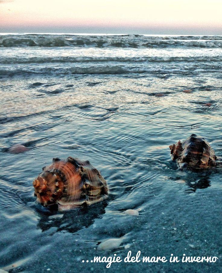 il mare in inverno fa grandi sorprese www.hotelalcacciatoredisogni.it