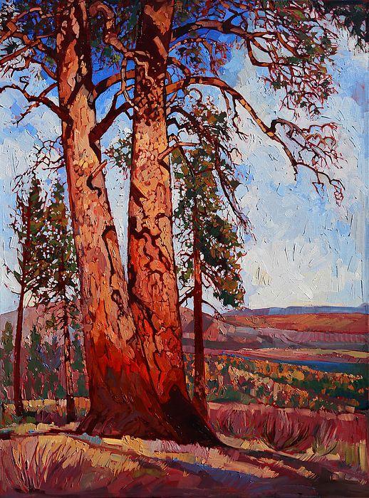 Pine Shadows by Erin Hanson