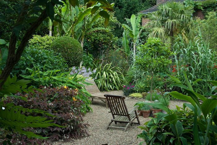 This is very much the tropical feeling that I am working to achieve ~*~ Will Giles' Exotic Garden