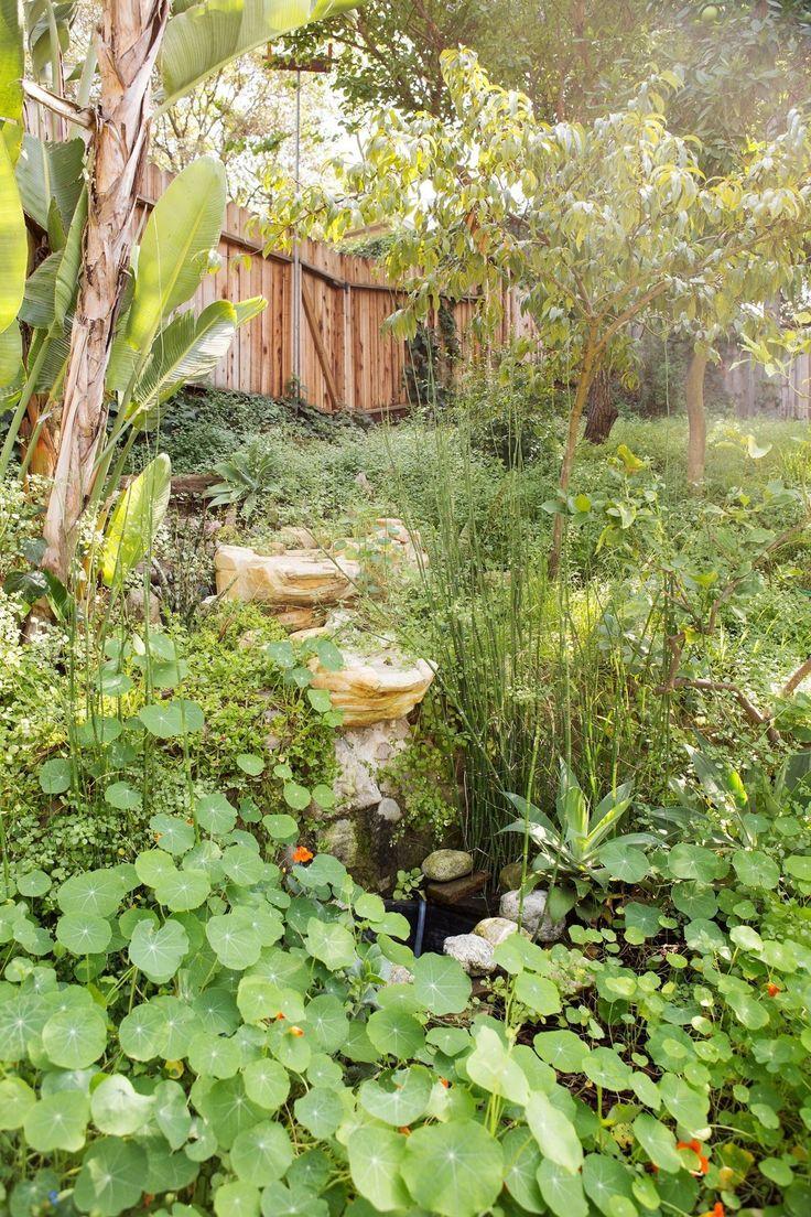 49 best autumn landscapes images on pinterest flower gardening