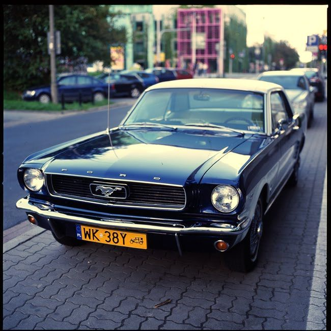 Mustang Warsaw Poland USA Cars