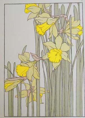 Daffodil - J. Foord Art Nouveau Flowers and Plants Circa 1906, Chromlithographs
