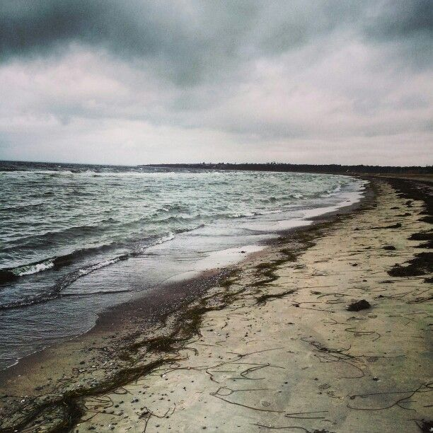 Beautiful Beach winter time #beach at #winter #denmark #water #cold #water #sky #stone #nature