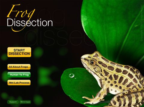7 best teaching frog dissection images on pinterest life science frog dissection app is scientifically accurate fandeluxe Gallery