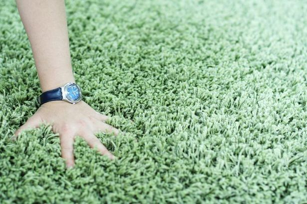 How to Cover an Ugly Carpet in a Rental Unit thumbnail