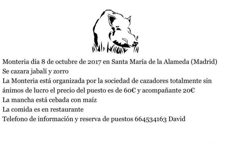 Montería en Santa María de la Alameda   |    Montería el día 8 de octubre de 2017 en Santa María de la Alamenda (Madrid). Se caza a Jabalí y Zorro. La montería esta organizada por la sociedad de cazadores, totalmente sin animo de lucro. El precio del puesto es de 60€ y acompañante 20€. La mancha está cebada con maíz. La comida es en...  |  http://www.anunciocaza.com/ad/monteria-en-santa-maria-de-la-alameda/