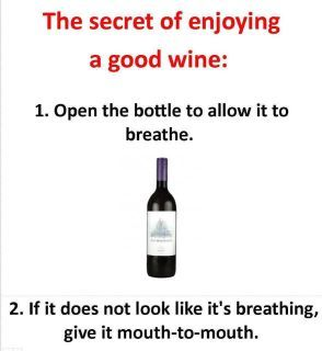 Help, my wine stopped breathing. Must give it mouth to mouth.