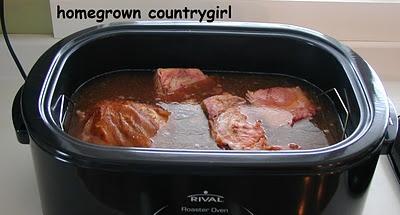 35 best recipes for nesco roaster images on pinterest electric rh pinterest com nesco roaster oven recipes nesco roaster oven manual 6 qt