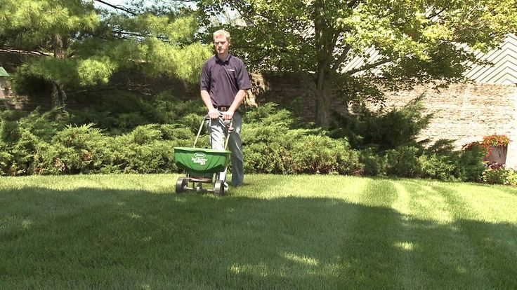 There are so many other farm equipments that you can use for your lawn. Some of them include the aerator shoes, dethatchers, trimmers, and mowers among others. Make sure that you choose the very best option for your use.