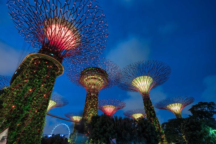 Singapore's Amazing Gardens by the Bay and Marina Bay Sands - http://andystravelblog.boardingarea.com/2016/02/03/singapore-gardens-marina-bay/