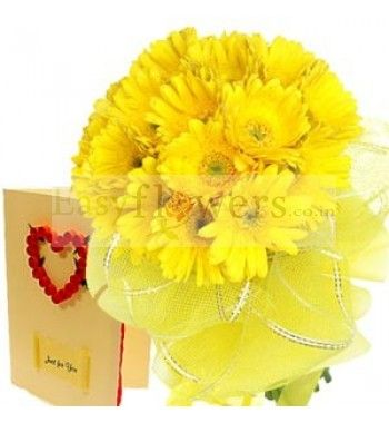 15 Yellow Gerbera packed in yellow packing with a Love Greeting Card (Card choice available). #FlowersDeliveryIndia #EasyFlowersMumbai