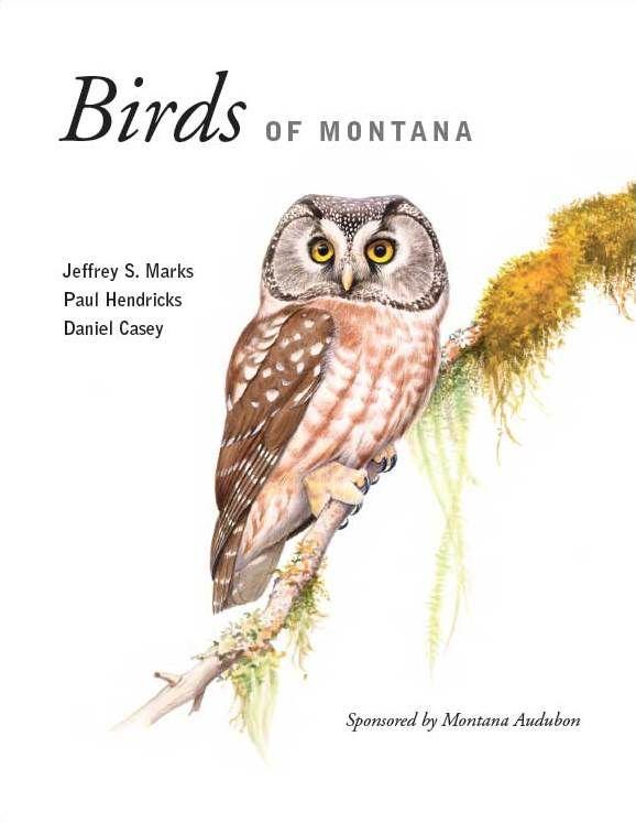 Birds of Montana, by Jeffrey S. Marks, Paul Hendricks, and Daniel Casey