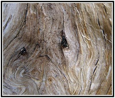vormleer - boomschors structuur