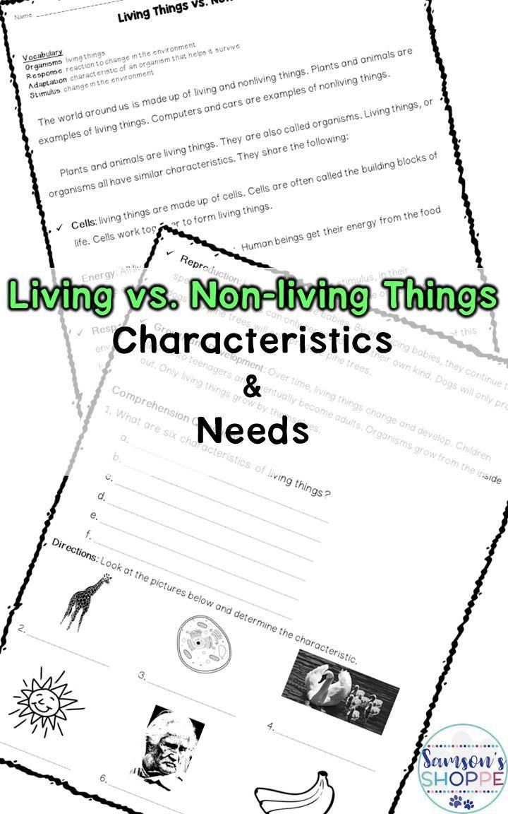 Workbooks reading graphs worksheets middle school : 2503 best Reading Worksheets for Struggling Readers images on ...