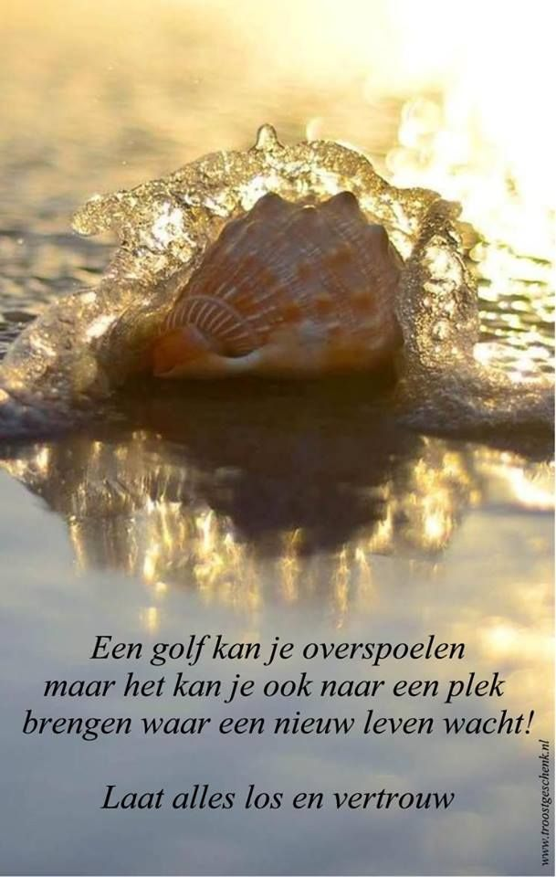 Een golf