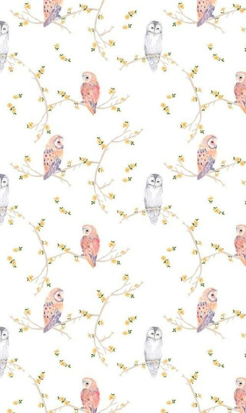 wallpaper, owl, and background afbeelding