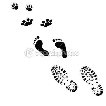 Paws and feet vector silhouette details pinterest