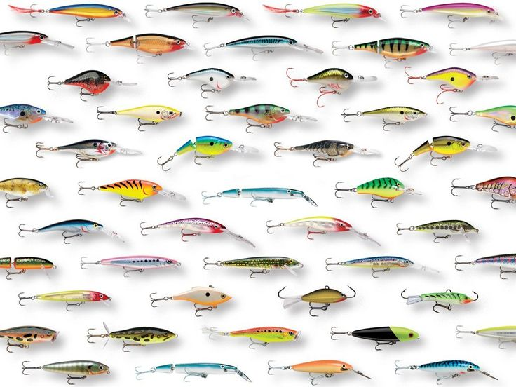 Rapala fishing lures for walleyes learn how to catch any for Walleye fishing tackle
