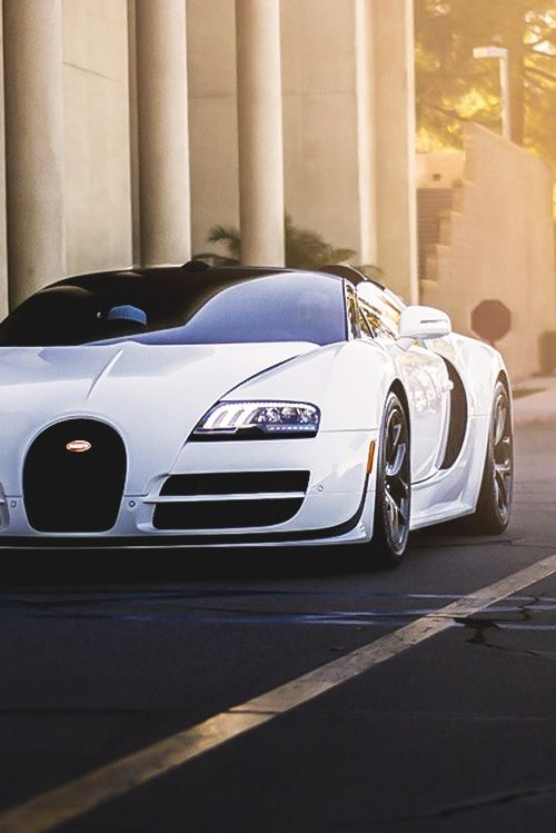 motivationsforlife:  Bugatti Veyron Vitesse L'Orque Blanc //...