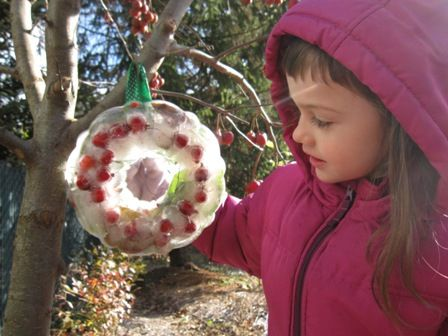 Take a hike, collect leaves and berries, then make an ice wreath!
