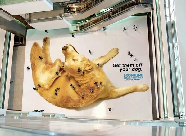Huge Frontline flea and tick spray ad in a mall in Jakarta!