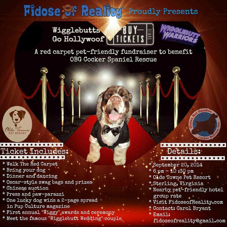 """Fidose of Reality has two announcements to share today with regards to the Wigglebutts Go Hollywoof """"fun""""-draiser we are hosting to benefit OBG Cocker Rescue on September 20, 2014, in Sterling, Virginia."""